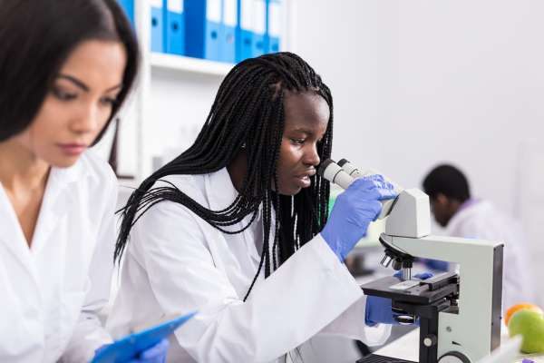 UF Wildlife Forensic Sciences Young microbiologists using a microscope in laboratory.